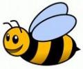 Прополис и мед - железният имунитет